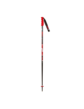ALIPNE SL TEAM SKI POLE SR/JR