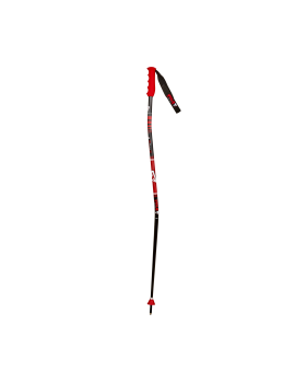 ALIPNE GS TEAM SKI POLE SR/JR